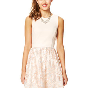 Scuba Top Lace Dress - Blush