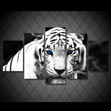 White Tiger with blue eyes - grey tone 5 panel wall art canvas