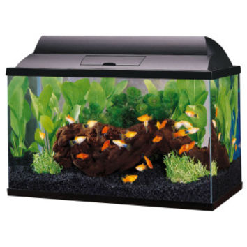 Top Fin 5.5 Gal Aquarium Starter Kit