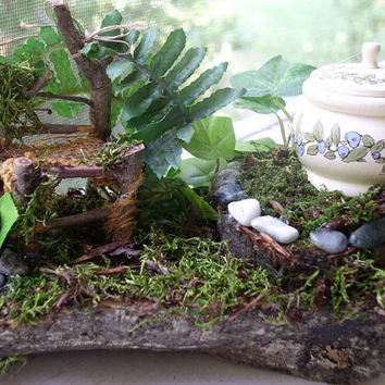 Woodland Fairy House Setting with Chair and by BetweenTheWeeds