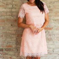 Acra Lace Dress - Blush