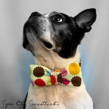 Dog Collar Bow TieMulti Floral by sofacitysweethearts on Etsy