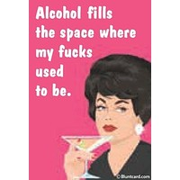 Alcohol Fills The Space Where My Fucks Used To Be Magnet
