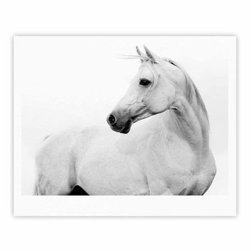 Pale Horse - White Black Animals Photography Fine Art Gallery Print