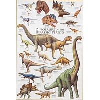 Dinosaurs of the Jurassic Period Poster 24x36