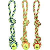 Petco Tennis Ball with Rope Tug Dog Toy