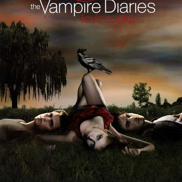 The Vampire Diaries 11x17 TV Poster (2009)