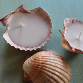 Medium Seashell Soy Wax Candles, Beach House Decor, Wedding Table Favors