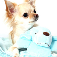Snuggle Puppy Baby Blue Blanket (Small) | Image 3 | Chihuahua Clothes and Accessories at the Famous Chihuahua Store!