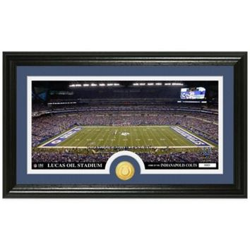 NFL Indianapolis Colts Stadium Panoramic Photo Mint