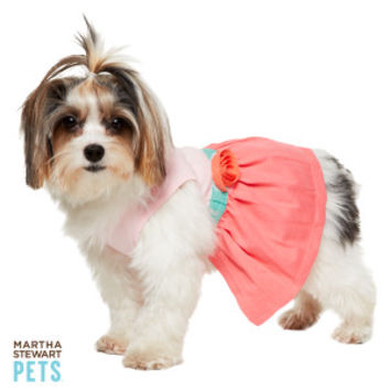 Martha Stewart Pets™ Colorblock Dog Dress