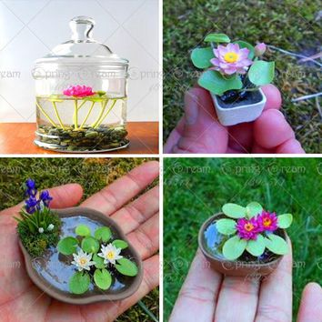 5 Pcs Mini Lotus Flower Bonsai Diy Potted Plants Indoor Pot Germination Rate Of 95% Mixed Colors bonsai home garden
