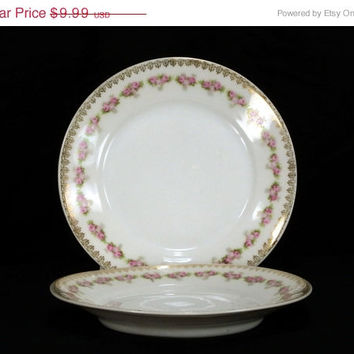 "ON SALE 2 Antique ZS Co Bavaria 6"" Bread & Butter Plates Pink Roses Gold Filigree ZSC83"