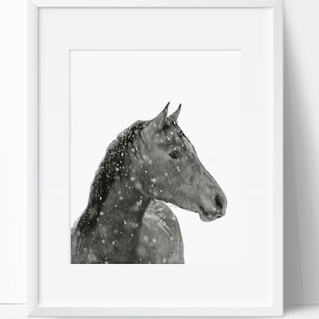 Printable Art, Horse Art, Horse Printable, Digital Print, Horse Print, Wall Art, 8x10, Instant Download, Horse with Snow, Black White, Art