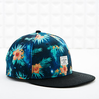 Cayler & Sons Floral and Galaxy Cap in Dark Blue - Urban Outfitters