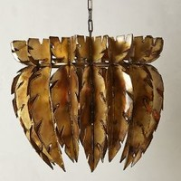 Feathered Chandelier by Anthropologie Gold One Size Lighting