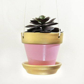 Hanging Planter, Succulent Planter, Terracotta Pot, Modern Planter, Indoor Planter, Succulent Pot, Air Planter, Pink Planter, Gold Planter