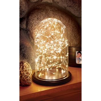Order Home Collection Glass Cloche with LED Lights