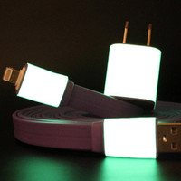 Lou Anne Castillo: iPhone 5 Charger 10ft Purple, at 11% off!