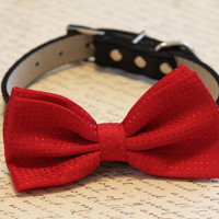 Red Dog bow tie- with high quality black leather collar, Red Chic Dog Bow tie, Red Wedding accessories