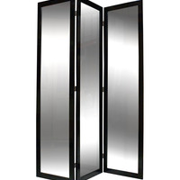 Screen Gems Mirrior Screen Room Divider, Black