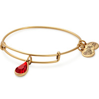 July Birth Month Charm Bangle With Swarovski® Crystal
