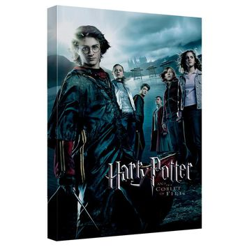 Harry Potter - Goblet Of Fire Canvas Wall Art With Back Board
