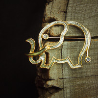 Hollow Elephant Brooch #5111