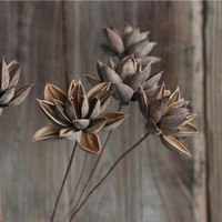 Home Decor Dried Flowers Decoration [6283562694]