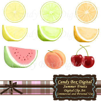 Fruit Clipart, cherry clipart, watermelon clipart, peach clipart, lemon clipart, lime clipart, fruit clip art - Commercial Use OK