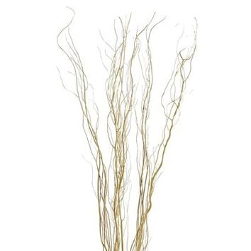Curly Willow Bundle - Gold