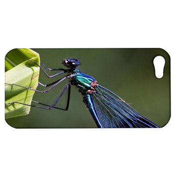 Blue Dragonfly Apple iPhone 5 Hardshell Case