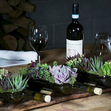 Wedding Decor // Wine Bottle Succulent Garden Planters // 3 pack