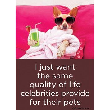 I Just Want The Same Quality Of Life Celebrities Provide For Their Pets Magnet