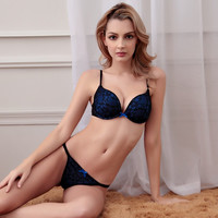 Women Sexy bra Plus Size Embroidered Lace Bra Sets Embroidered Thong Bra And Panty Set sexy lingerie women intimates cup ABC