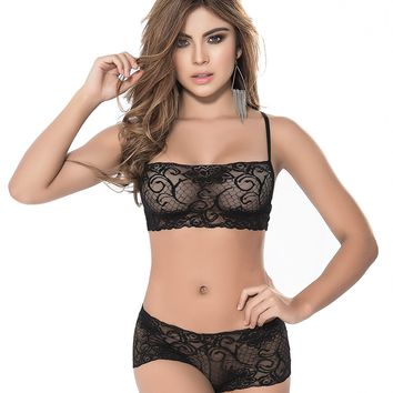 Sheer Lace Bra & Panty Set