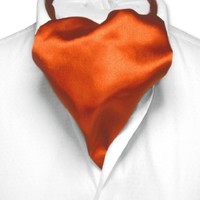 Biagio ASCOT Solid BURNT ORANGE Color Cravat Men's Neck Tie