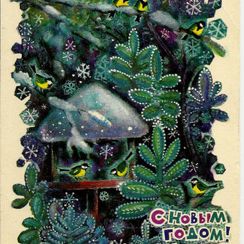 Birds, Winter, New Year, Forest, Vintage  Russian Postcard USSR print 1970