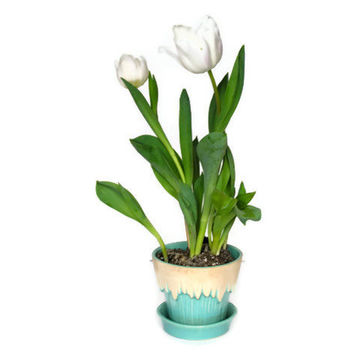 Vintage McCoy Flowerpot Flower Pot Melting Snow Springtime Tulip Planter Blue White Icicles