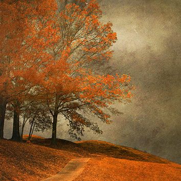 Trees on hilltop, Fall color photo, dark orange black leaves, dramatic woodland landscape, rustic modern home decor ~ free US shipping