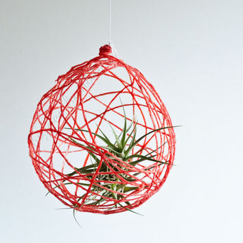 Air Nest air plant holder terrarium hanging planter container
