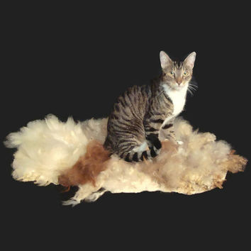 Cat Bed - Felted Wool Fleece Cruelty Free Pet Bed - Rom-Al-Llama-Freisian - Supporting US Small Farms