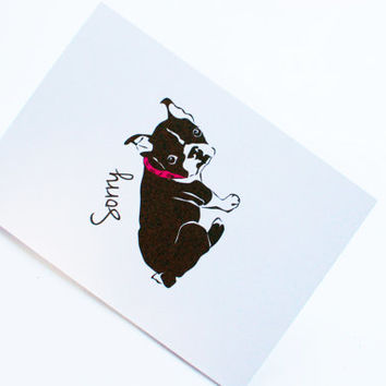 I'm sorry card, black and white dog, greetings card, pink collar, cute I'm sorry card, card for friends, blank inside, apology card