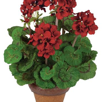 """Indoor/Outdoor Red Silk Geranium Potted Plant - 16"""" Tall"""