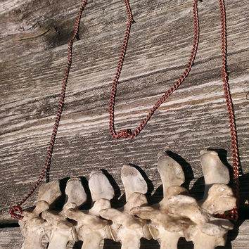Bone Necklace - Bone Pendant - Real Animal Bone Jewelry -  Vertebrae Necklace - Spine Necklace - Wiccan Pagan Jewelry
