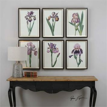Uttermost Iris Beauties Floral Prints S/6