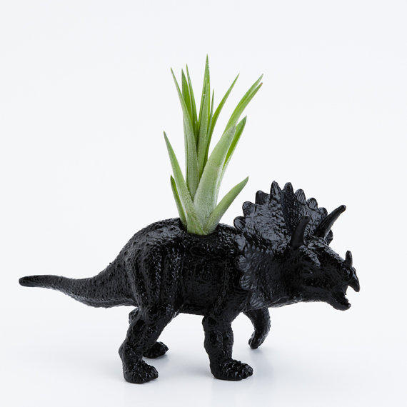 Small Dinosaur Planter With Air Plant From Boygirltees On Etsy