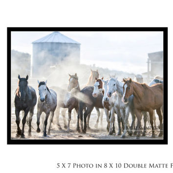 The Gang Photo Print on Double Matted Frame / Home Decor / Horse Photography / Fine Art / Wild Horses / Cowboy Photography / Western /