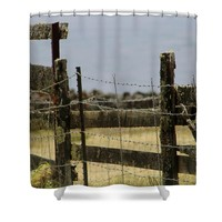 Moss Covered Shower Curtain for Sale by Pamela Walton