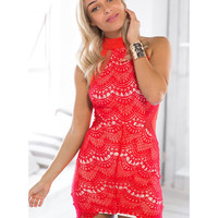 Halterneck Lace Sleeveless Bodycon Mini Dress